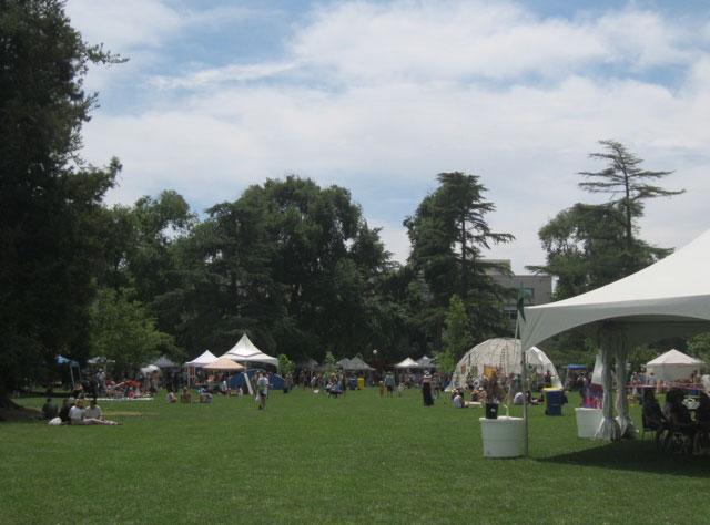 22-whole-earth-festival-2012